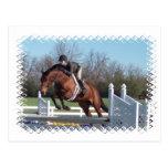 Caballos y postal de salto de la demostración