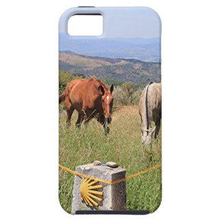 Caballos y poste del marcador de la cáscara, EL iPhone 5 Fundas
