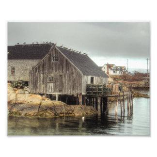 Cabaña de la pesca de la ensenada de Peggys Cojinete