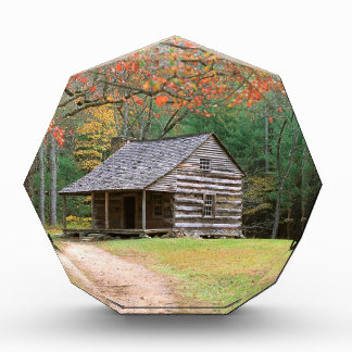 Cabaña de madera histórica de la escena en ahumado