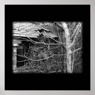 Cabaña y árbol viejos. Blanco y negro. Posters