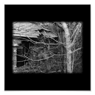 Cabaña y árbol viejos. Blanco y negro. Póster