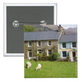 Cabañas, Beddgelert, Gwynedd, País de Gales Pin Cuadrado