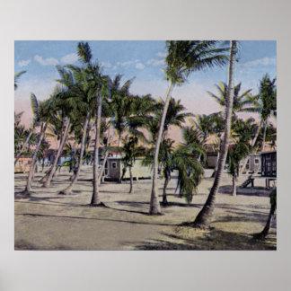Cabañas de Key West la Florida en las llaves Posters