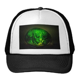 Cabbage-966 Trucker Hat