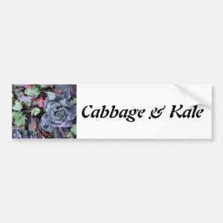 Cabbage and Kale - Photograph Bumper Sticker