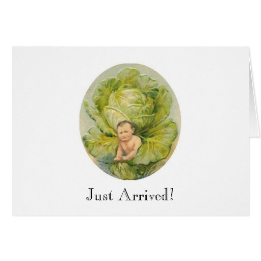 Cabbage Birth Announcement Card