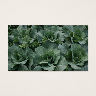 Cabbage Business Card