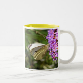 Cabbage Butterfly Mug