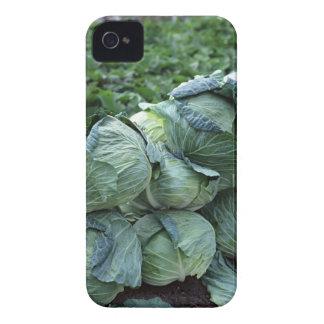 Cabbage Case-Mate iPhone 4 Case