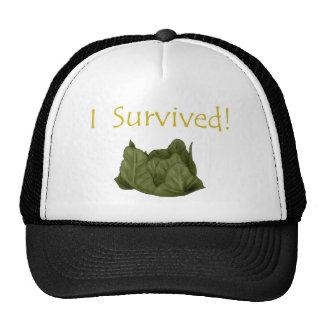 Cabbage Hat