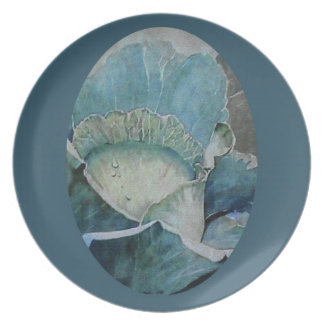 Cabbage in Blue Plate