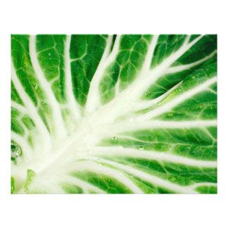 "Cabbage leaf 8.5"" x 11"" flyer"