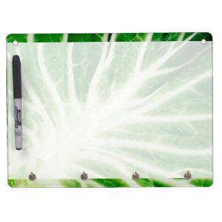 Cabbage leaf dry erase board with keychain holder