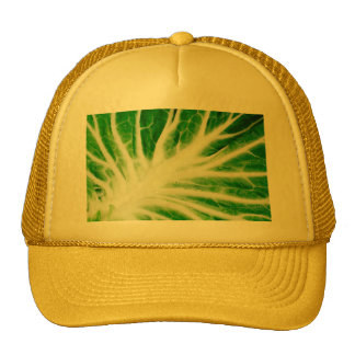 Cabbage leaf trucker hat