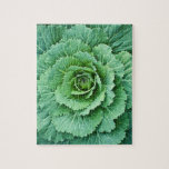 Cabbage Leaves Jigsaw Puzzle