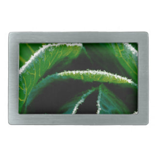 Cabbage one of your five a day belt buckles