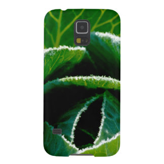 Cabbage one of your five a day samsung galaxy nexus cases