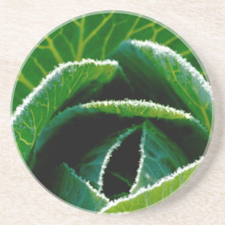 Cabbage one of your five a day drink coasters