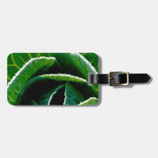 Cabbage one of your five a day luggage tags