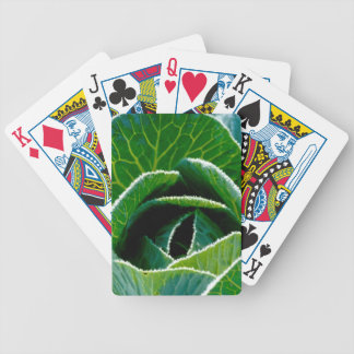 Cabbage one of your five a day bicycle poker cards