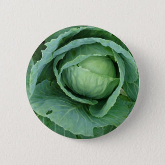 Cabbage Pinback Button