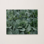 Cabbage Puzzle