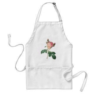 Cabbage Rose Botanical Print Apron