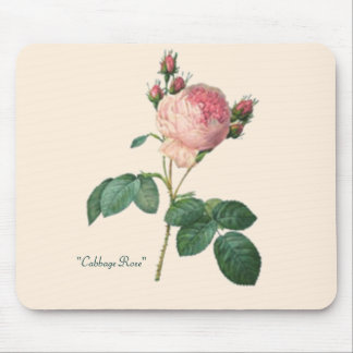 Cabbage Rose Botanical Print Mouse Pad
