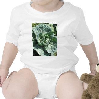 Cabbage Baby Bodysuits