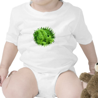 cabbage baby creeper