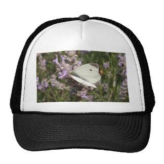Cabbage White Butterfly Trucker Hat