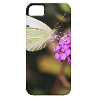 Cabbage White Butterfly iPhone 5 Covers
