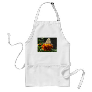 Cabbage white butterfly on a marigold adult apron