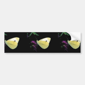 Cabbage White butterfly on Rough blazingstar Bumper Stickers