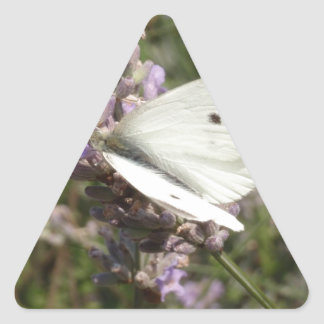 Cabbage White Butterfly Triangle Sticker