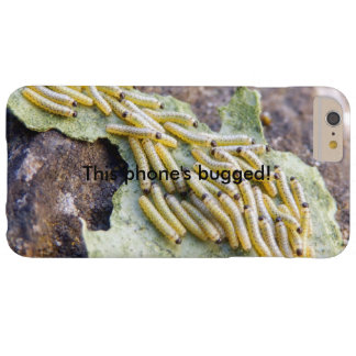 Cabbage White Caterpillars Bugged iPhone Case