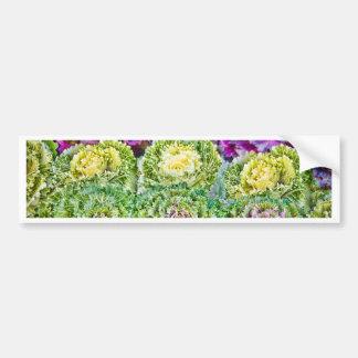 Cabbages Bumper Sticker