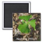 Cabeceo del imán del trillium