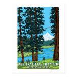 Cabeceras del río de Metolius, Oregon Tarjetas Postales