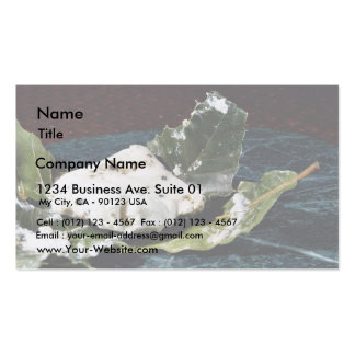 Cabecou Feuille Cheese Wrapped In Chestnut Leaves Business Card Templates
