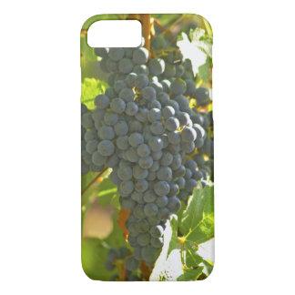 Cabernet Sauvignon grape bunch in the Chateau iPhone 8/7 Case