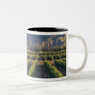 Cabernet Sauvignon vines in Huailai Rongchen Two-Tone Coffee Mug