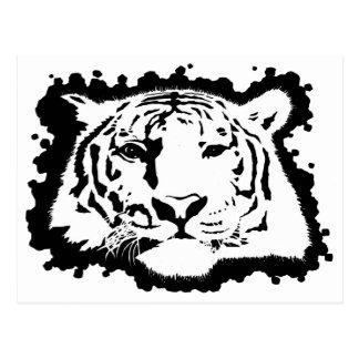 Cabeza 2 del tigre postales