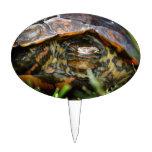 Cabeza adornada de la tortuga de madera encendido  figura de tarta