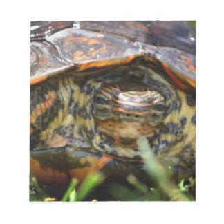 Cabeza adornada de la tortuga de madera encendido  blocs