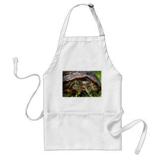 Cabeza adornada de la tortuga de madera encendido  delantales
