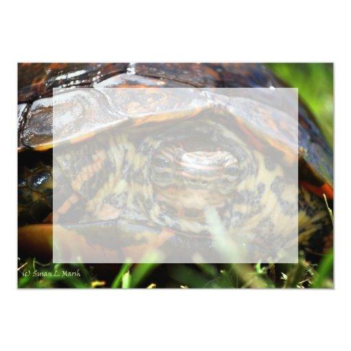 Cabeza adornada de la tortuga de madera encendido anuncio