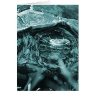 Cabeza adornada de la tortuga de madera encendido tarjeta de felicitación