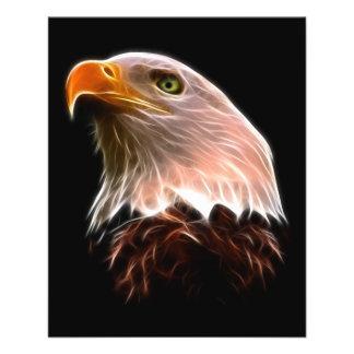 """Cabeza americana de Eagle calvo Folleto 4.5"""" X 5.6"""""""
